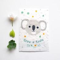 koala zaadjes kaart