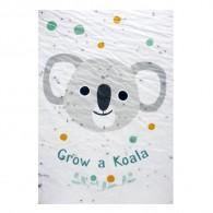 Bloeikaart - Grow a KOALA